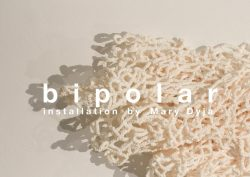 b i p o l a r  installation by Mary Dyja, February 4-15, 2015