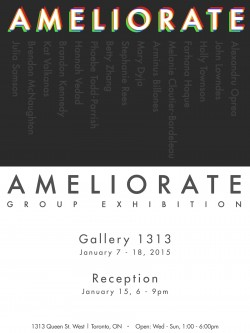 AMELIORATE: Group Show, January 7th-18th 2015