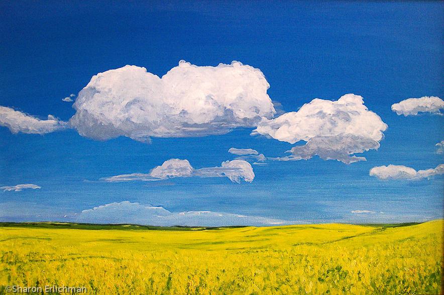 Prairie_Sky