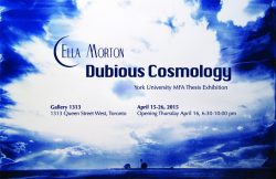 Dubious Cosmology. April 15-26, 2015
