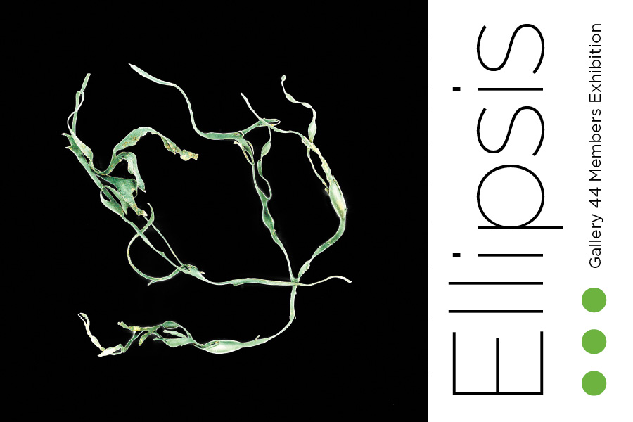 Ellipsis – Gallery 44 Members Exhibition