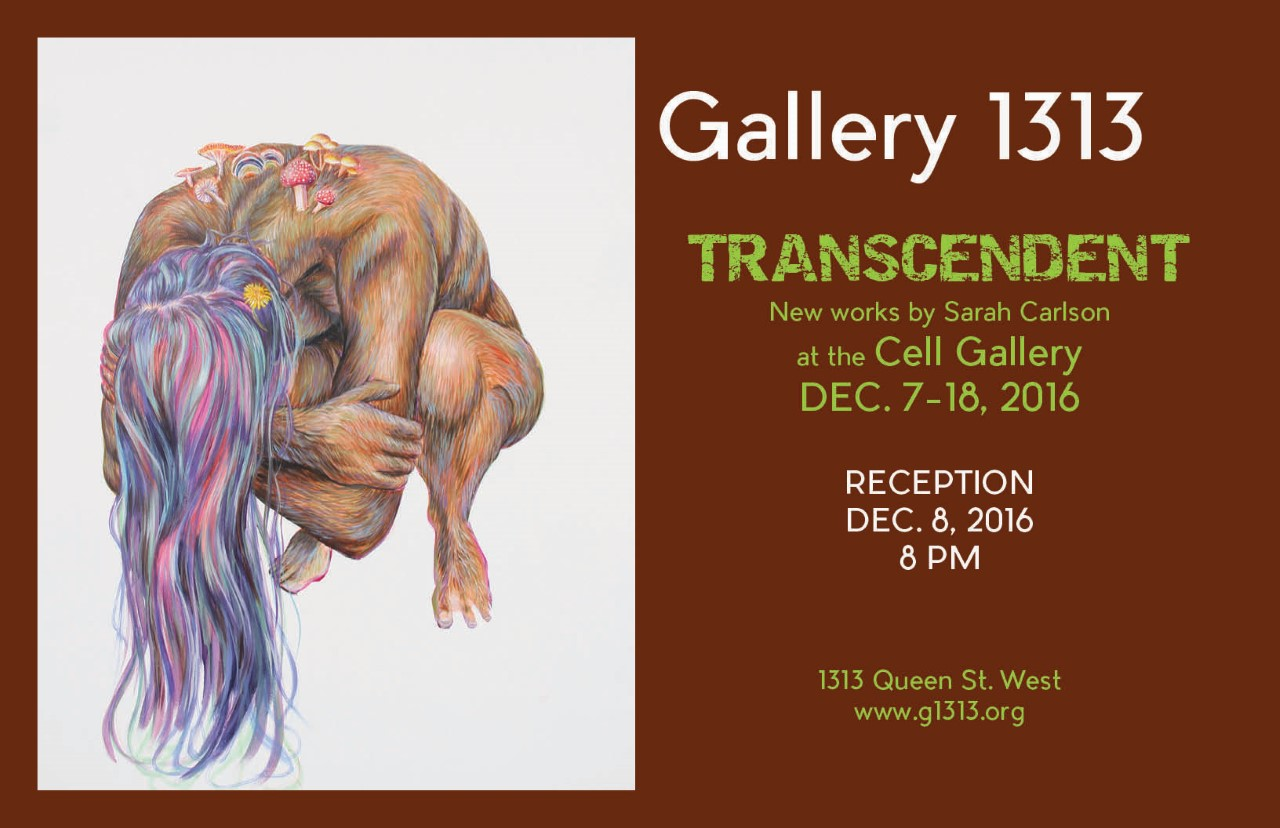 Transcendent: New works by Sarah Carlson